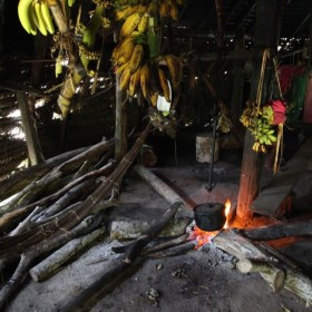 Curupira – amazońska wróżka