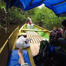 Program wyprawy do dżungli listopad 2015
