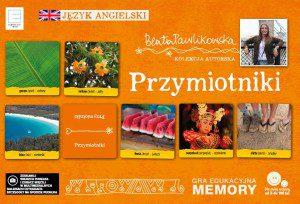 memory ang2