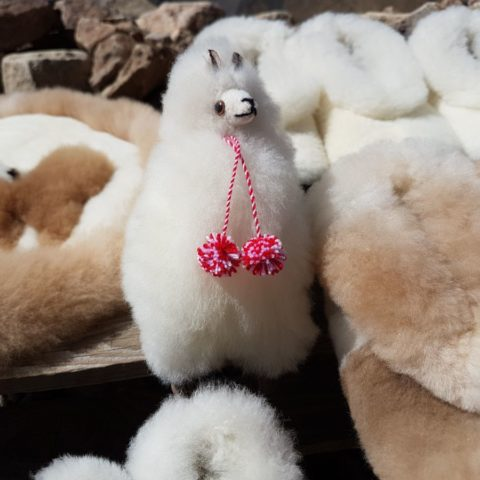 Pluszowe lamy, fot. Beata Pawlikowska