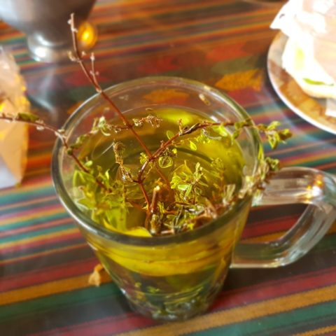 Inkaska herbata z ziół, fot. Beata Pawlikowska