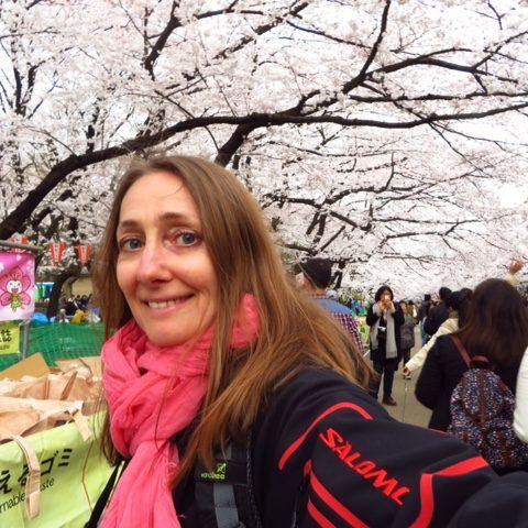 W parku kwitnących wiśni, fot. Beata Pawlikowska