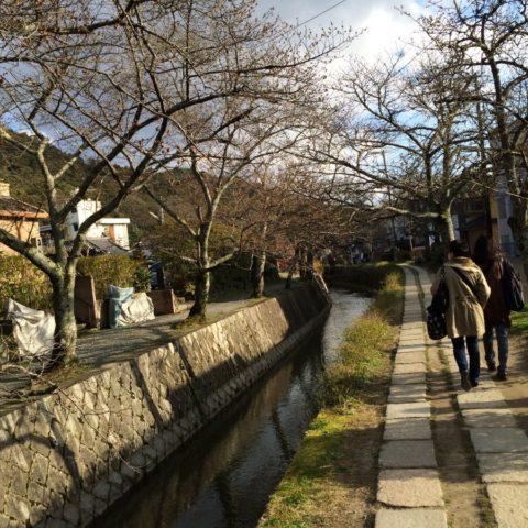 Scieżka Filozofów w Kyoto, W parku kwitnących wiśni, fot. Beata Pawlikowska