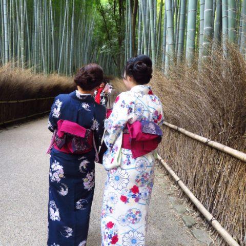 W Bambusowym Lesie, fot. Beata Pawlikowska