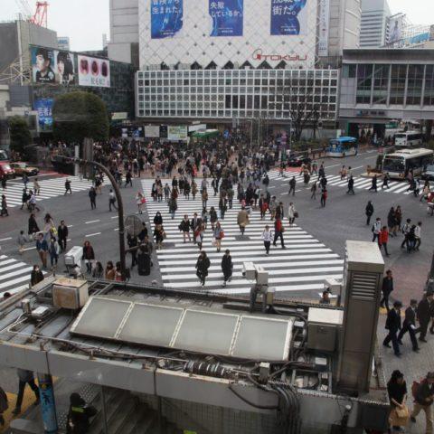 Najbardziej ruchliwe skrzyżowanie w Tokio, fot. Beata Pawlikowska