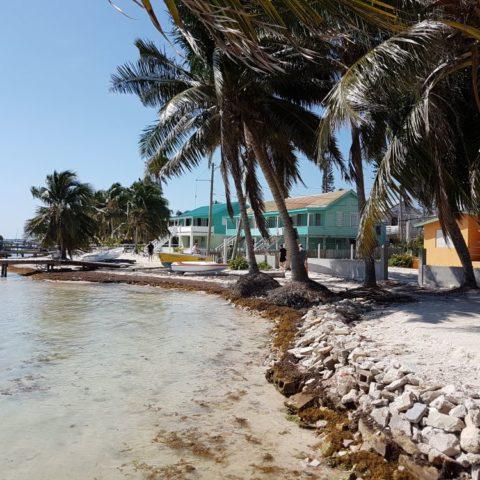 Biały piasek, palmy kokosowe, fot. Beata Pawlikowska