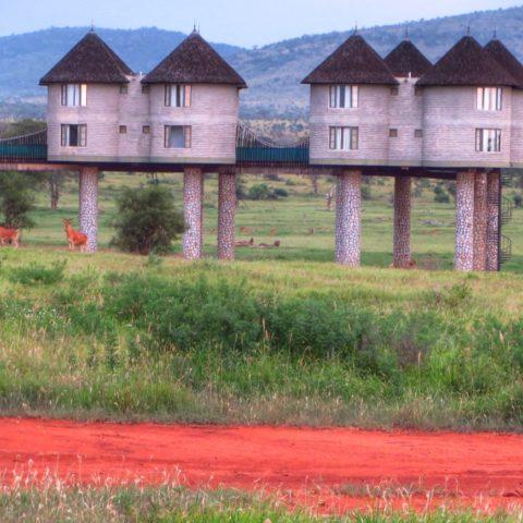 Hotel na palach na sawannie w Kenii, fot. Beata Pawlikowska