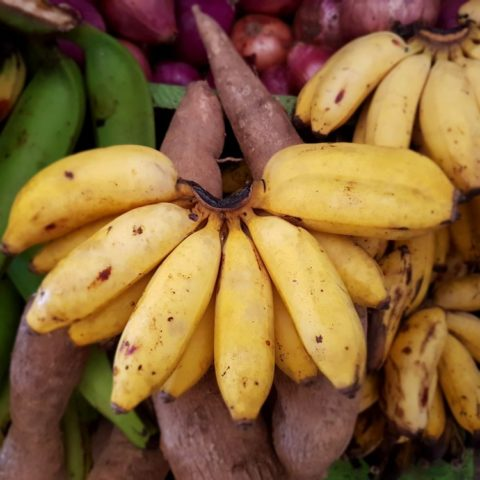 Banany owocowe, fot. Beata Pawlikowska