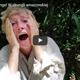 Amazonia 2017 - filmy
