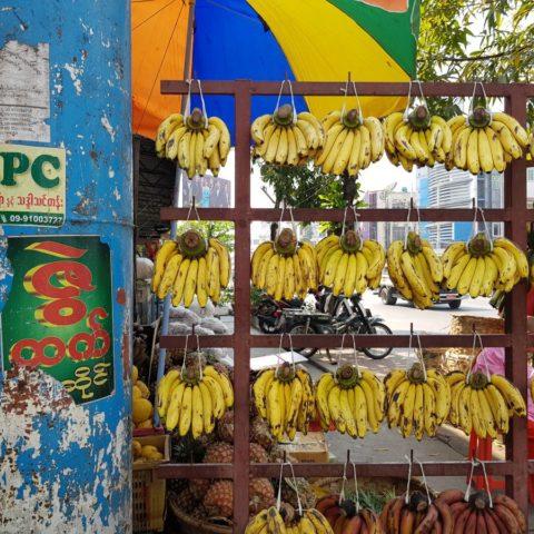 Mmm, pyszne banany,  fot. Beata Pawlikowska