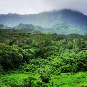 Wyprawa do wnętrza Tahiti