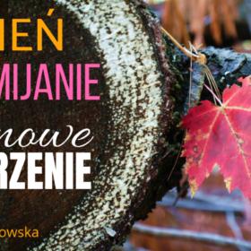 Jesień, przemijanie - NOWE SPOJRZENIE - PREMIERA W PONIEDZIAŁEK O 12.00