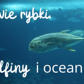Dwie rybki, delifiny i ocean
