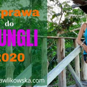 Wyprawa do dżungli 2020