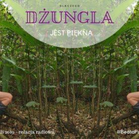 Dlaczego dżungla jest piękna - relacja radiowa