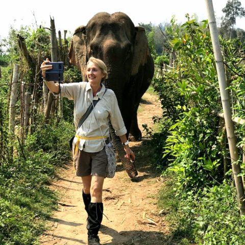 W sanktuarium słoni w Laosie