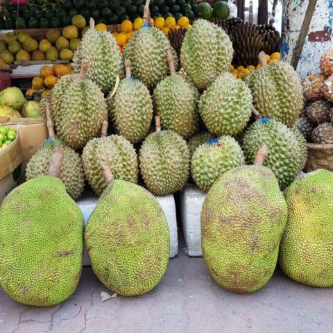 Duriany i (poniżej) owoce drzewa bochenkowego (jackfruit) sprzedawane na ulicy w Birmie