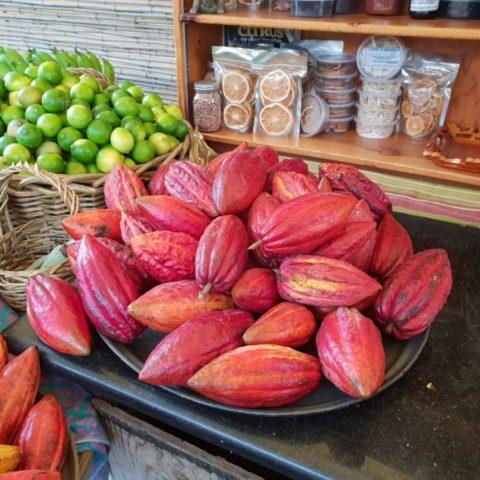 Owoce kakaowca, Hawaje