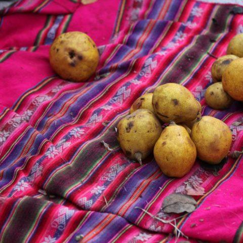 Dojrzałe gruszki na targowisku w Peru