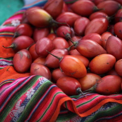 Tomate de arbol, tamarillo na targowisku w Peru.