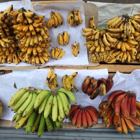 Różne odmiany bananów na targowisku w Wietnamie