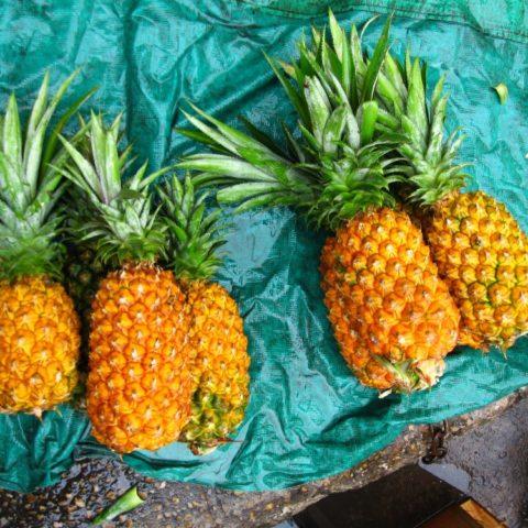 Dojrzałe ananasy na chodniku w Manaus, Brazylia