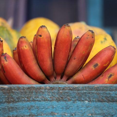Czerwone banany, pyszne, o kremowej konsystencji, Sri Lanka.
