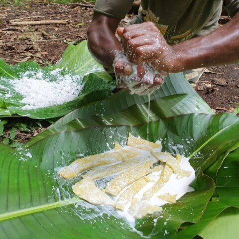 Pieczony w ognisku owoc drzewa bochenkowego polany mlekiem kokosowym.