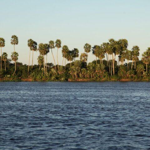 Podczas podróży łodzią po rzece Paragwaj.