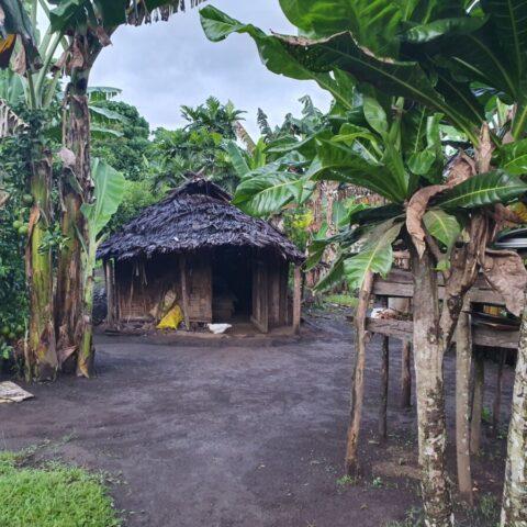 Dom ludzi z plemienia Small Nambas na Vanuatu.