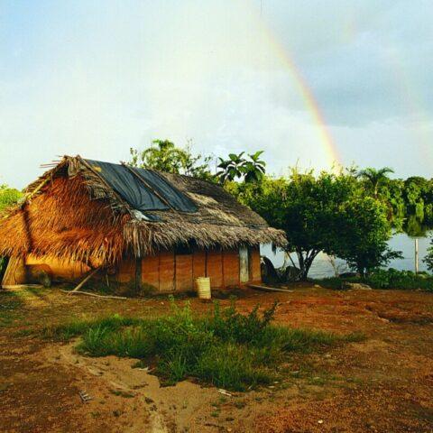 Indiańska chata nad rzeką Orinoko w Wenezueli.