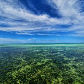 Dziś na Zanzibarze